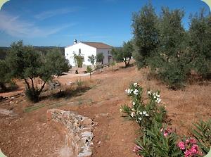 Casa rural solana del castillo en alan s sevilla - Hosteria casa adriano alanis de la sierra sevilla ...